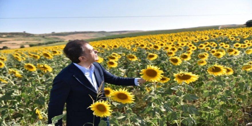 Ak Parti Sözcüsü Ömer Çelik'ten Dikkat Çeken İmamoğlu Paylaşımı