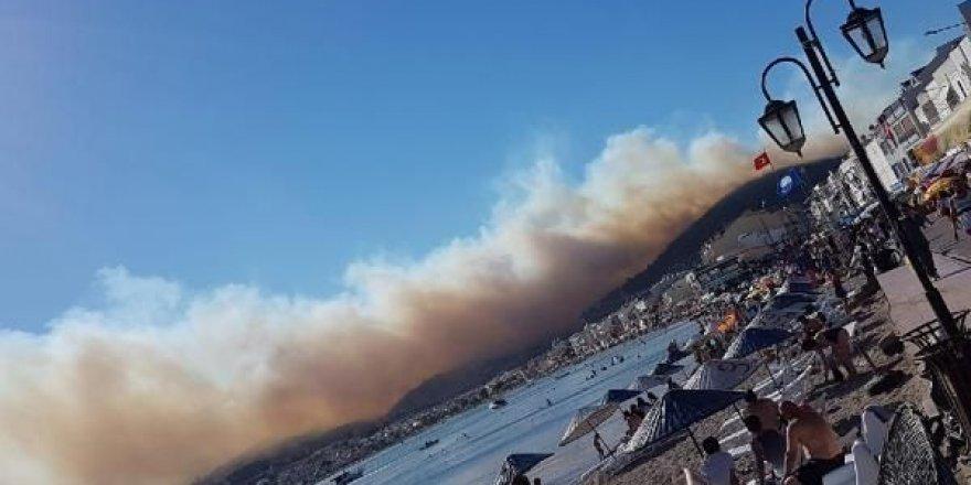 İzmir Dikili İlçesinde Orman Yangını