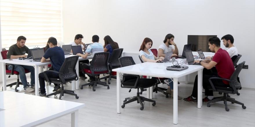 Sivas Anadolu'nun Yazılım Üssü Olma Yolunda