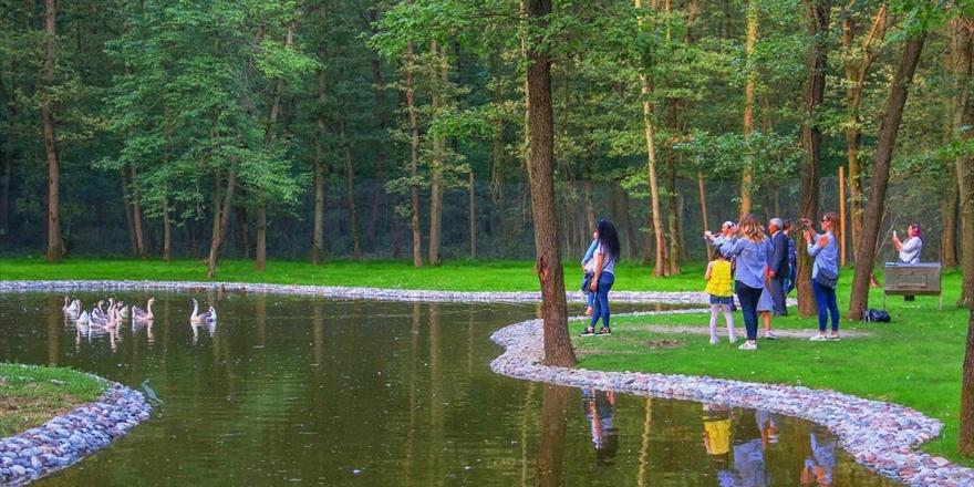 'Avrupa'nın En Büyük Doğal Yaşam Parkı' Film Seti Oldu