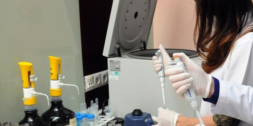 'Lenfomada İmmünoterapi İle Tedavi Başarı Artıyor'