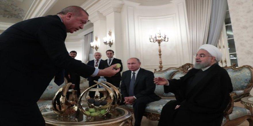 Erdoğan, Putin ve Ruhani'ye İncir İkram Etti