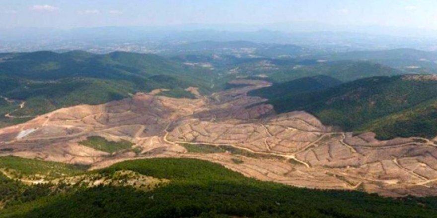 Kazdağları yakınındaki Kirazlı altın arama projesi durduruldu!
