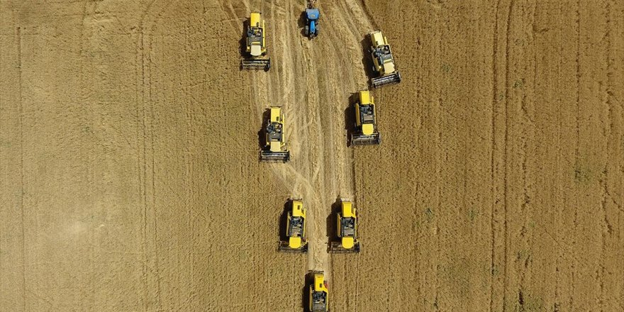 Tarımsal Desteklerde Yüzde 37 Artış Görüldü