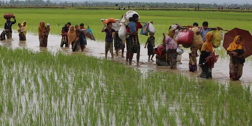 Bangladeş 100 Bin Arakanlı Müslüman'ı Adaya Yerleştirecek