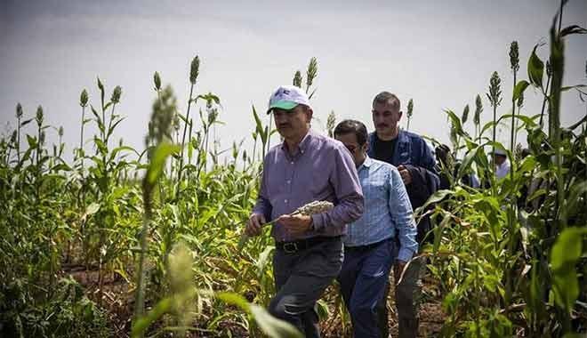 Tarım Bakanı Bekir Pakdemirli de icralık