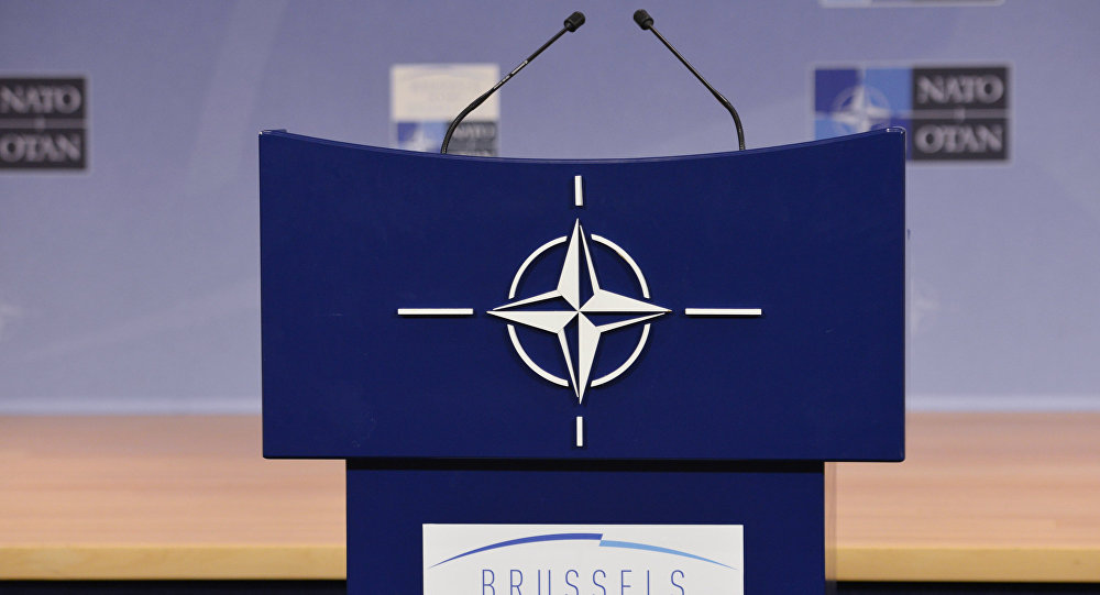 Alman vekil: Bugünün NATO'su, bizzat kendi gölgesinden ibaret