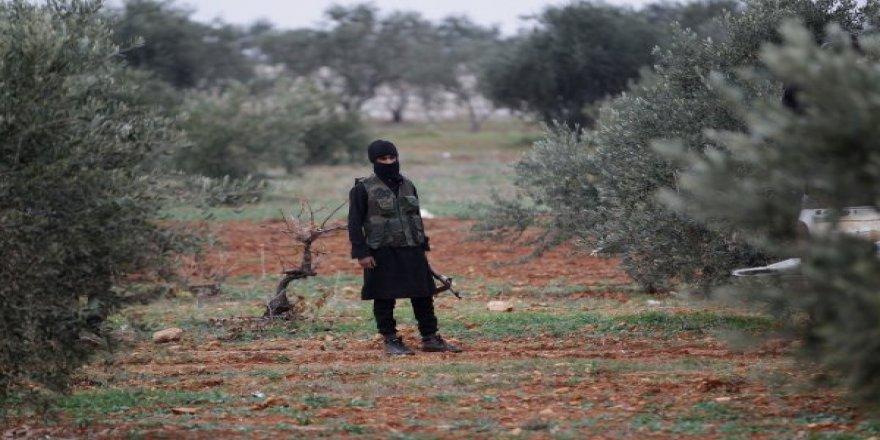 Rusya, Suriye'nin zeytinlerini dünyaya satacak