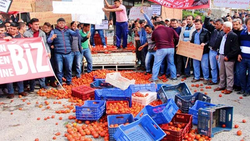 Çiftçi başına düşen borç 49 bin liraya dayandı