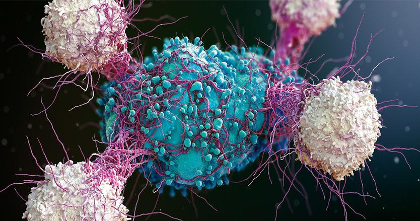 Kanser'de yeni bir tedavi türü
