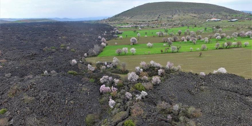 'Yanık Ülke' İlkbaharla Renklendi