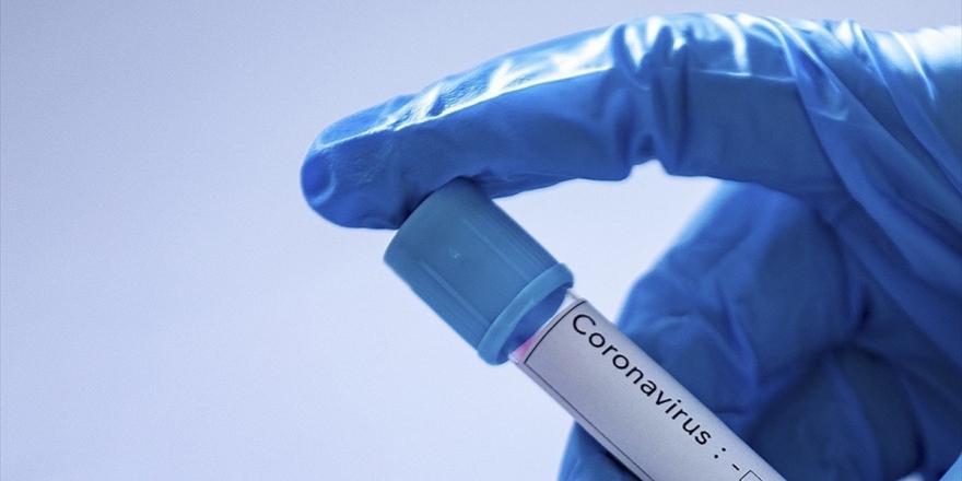 Uzmanlar Kalp Damar, Böbrek Ve Kanser Hastalarını Kovid-19'a Karşı Uyarıyor