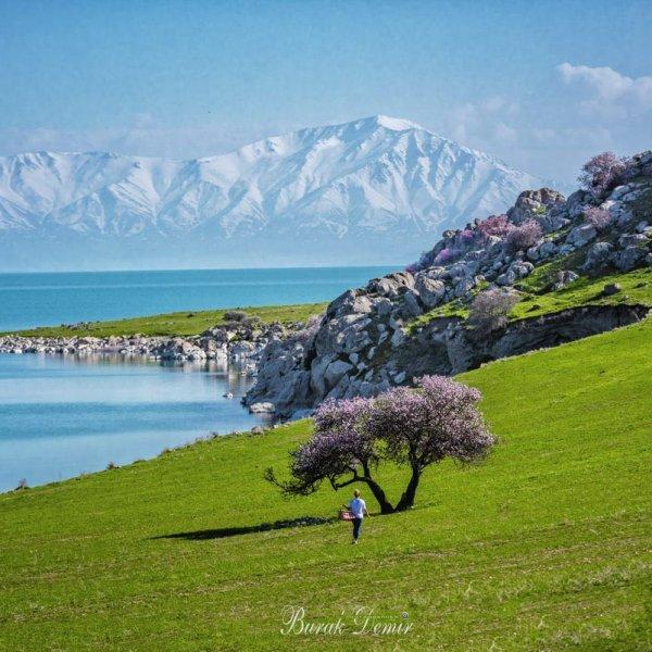 İsviçre değil !Türkiye Van... Çarpanak Adası'nın eşsiz güzelliği