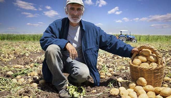 Çiftçiye 'Tarım sigortası' şoku!