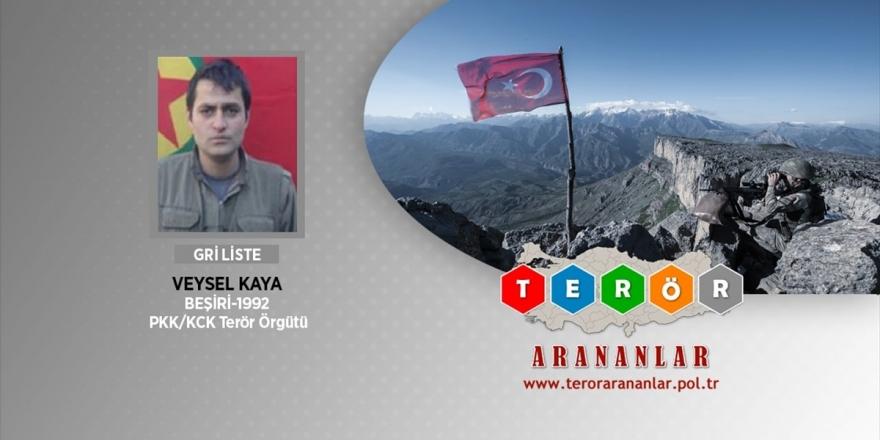 Bitlis'te Etkisiz Hale Getirilen Bir Teröristin Daha Gri Listede Olduğu Belirlendi