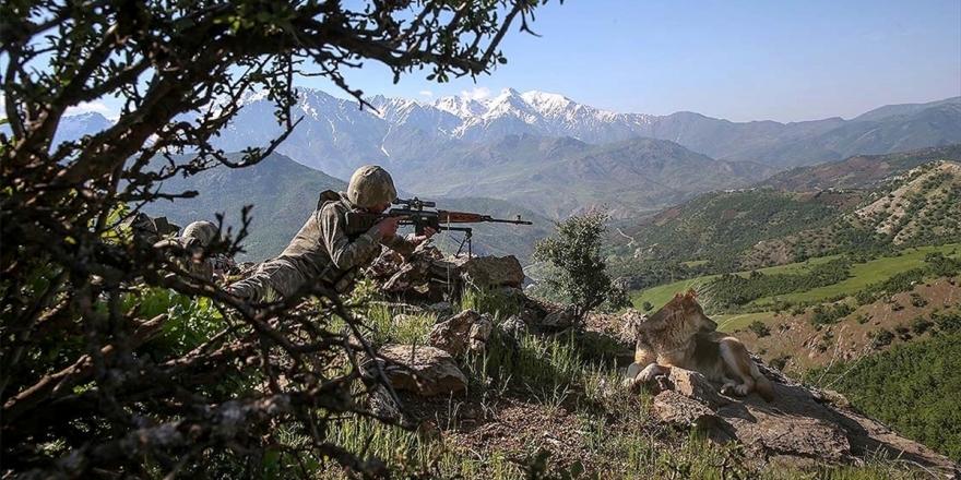 Şırnak Ve Elazığ'da 4 Terörist Etkisiz Hale Getirildi