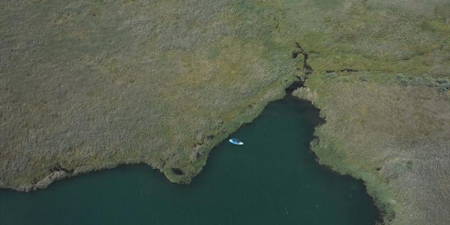 Kuş Gözlemcilerinin Uğrak Yeri: Dalyan Kanalı Ve Köyceğiz Gölü