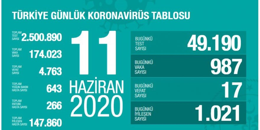 Türkiye'de koronavirüs nedeniyle 17 kişi daha hayatını kaybetti: Yeni vaka sayısı 987