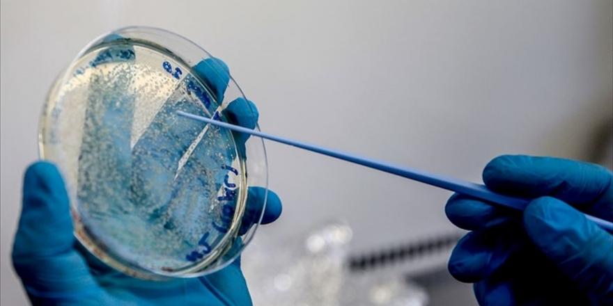 Almanya, Kovid-19 Aşı Geliştiricisi Curevac'ın Yüzde 23 Hissesini Satın Alıyor