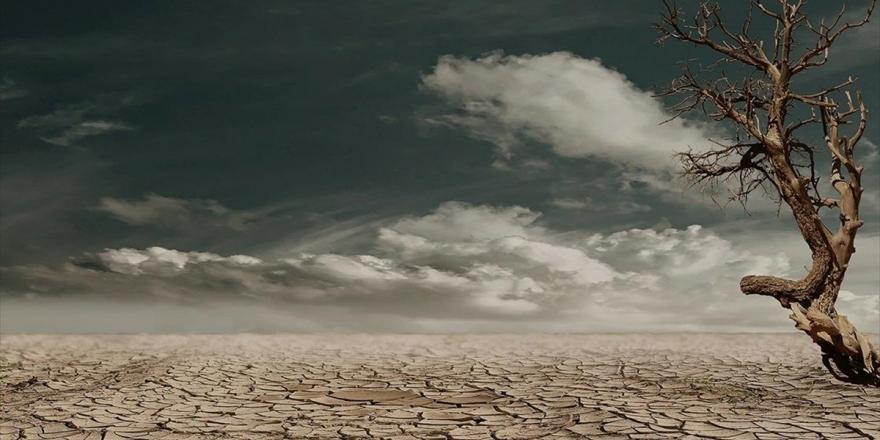 Çölleşme 10 Yıl İçinde 50 Milyon İnsanı Göçe Zorlayabilir