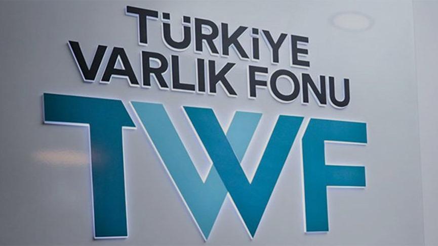 Dr.Mehmet Cavlı yazdı: Varlık Fonu
