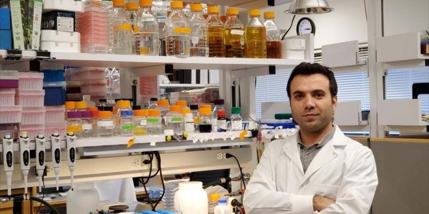 Harvardlı Türk Bilim İnsanına 400 Bin Dolarlık Araştırma Ödülü
