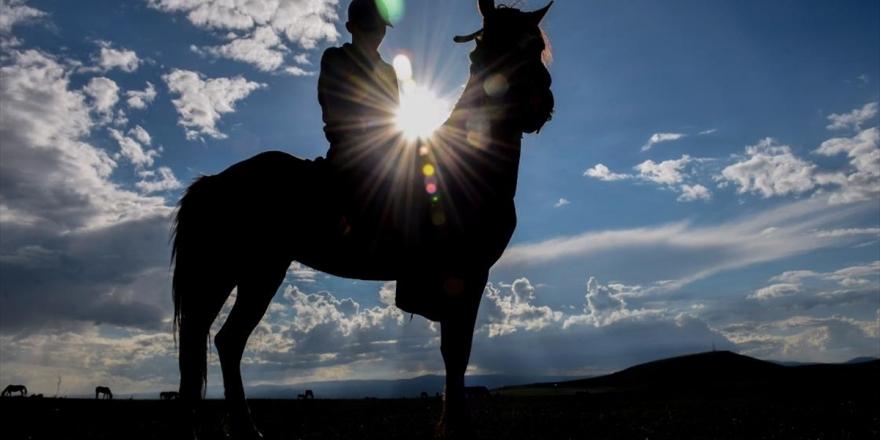 Yahni Dağı'nda Doğada Otlatılan Atlar İlgi Çekiyor