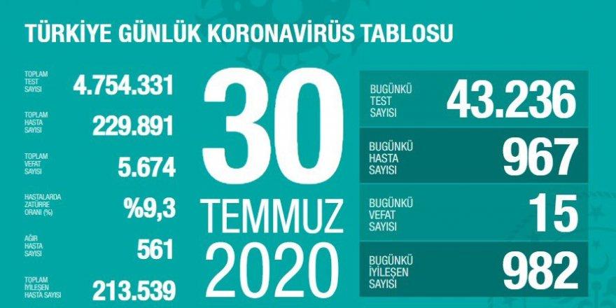 Türkiye'de Kovid-19'dan 213 bin 539 kişi iyileşti