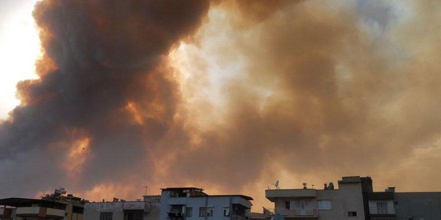 Aydın'da Korkutan Orman Yangını