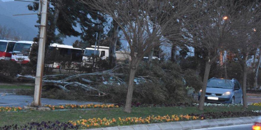 İzmir'i fırtına vurdu, kentte alarm verildi