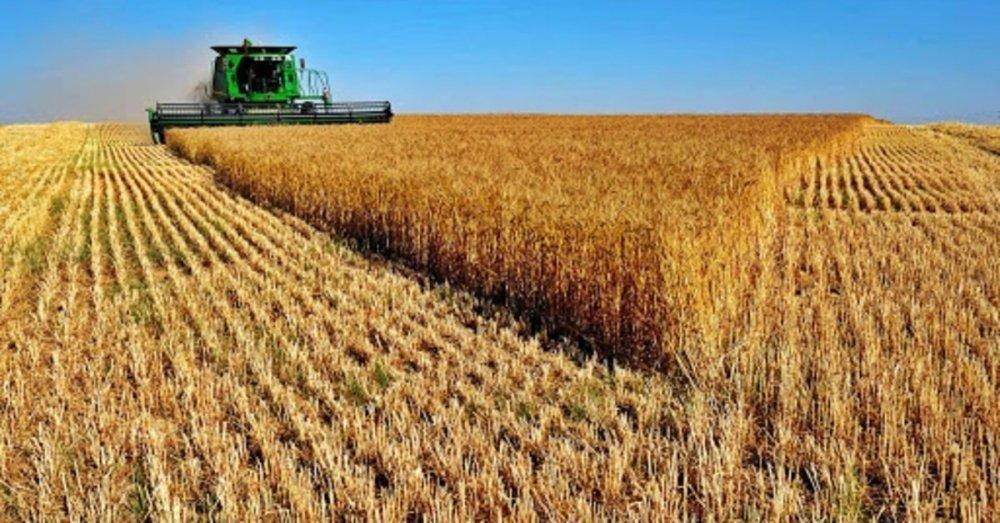 Ziraat Bankası borcunu ödeyemeyen çiftçilerin tarlalarını satışa çıkardı
