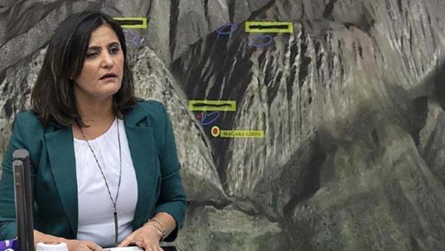 HDP'li Dirayet Dilan Taşdemir'in Haziran ayında Erbil'e çıkış kaydı ortaya çıktı