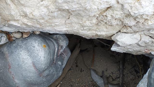 Kayalıklar arasında bulduğu Atatürk büstünü terk etmeye yüreği el vermeyince, evine getirip bahçesine dikti