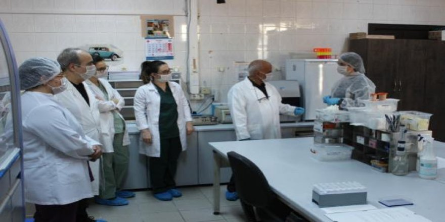 Prof. Çelebi'den yerli koronavirüs aşısı açıklaması: İnsan üzerinde faz çalışmasına geçilecek
