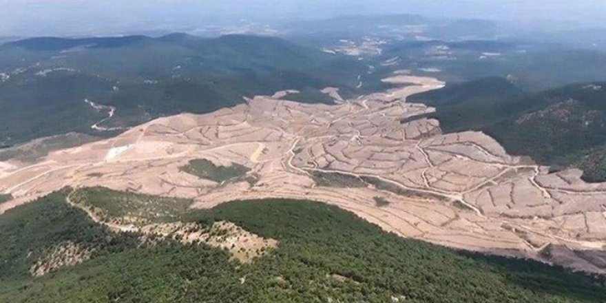 350 bin ağacın kesildiği Kazdağları'nda şirketin izni iptal edildi