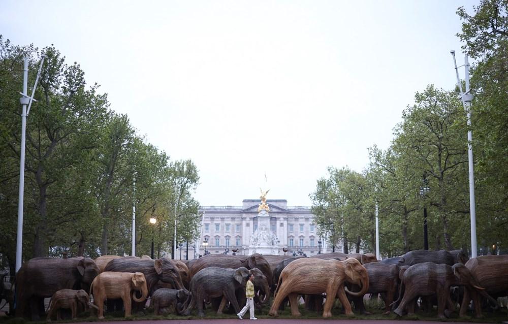 Buckingham Sarayı önünde gerçek boyutlu filler sergisi