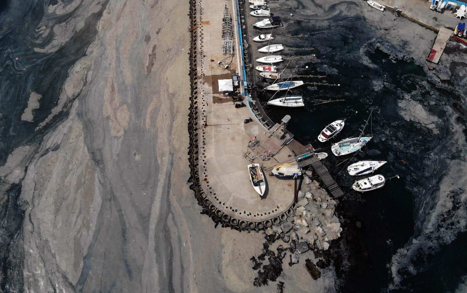 İstanbul'da Deniz Salyası İstilası Devam Ediyor