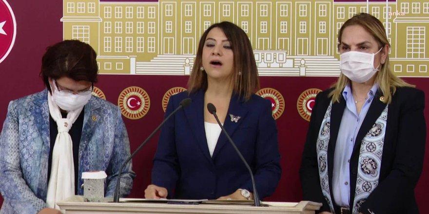 Komisyondan Çekilen CHP'li Kadın Vekiller'den Danıştay'a çağrı