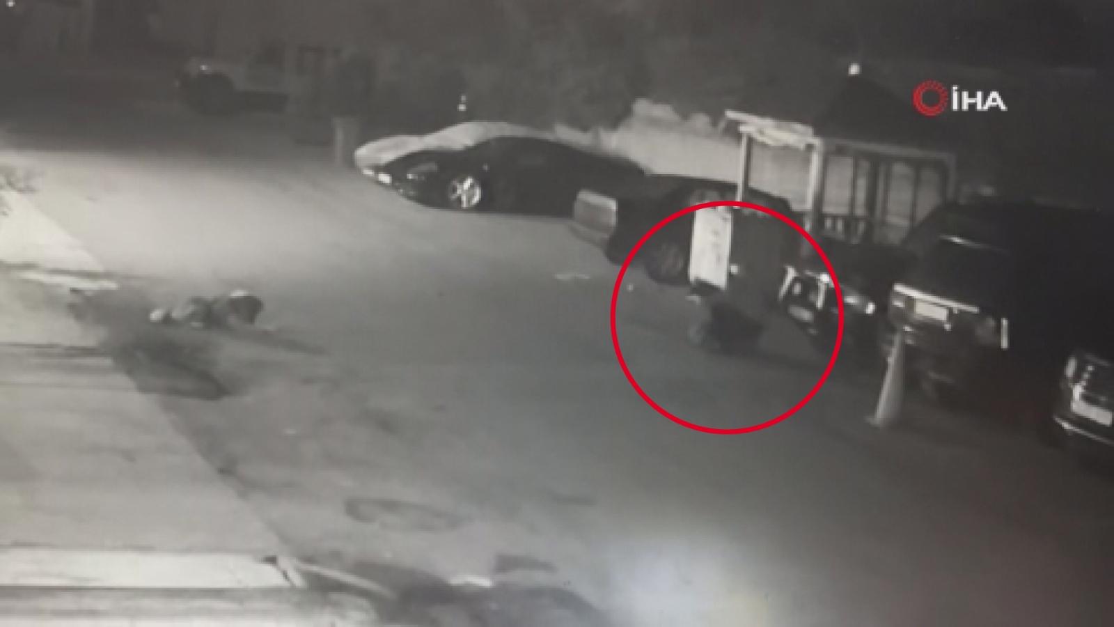 Sarıyer'de Vahşet: Yavru Köpeği Zehirli Ok İle Vurdu