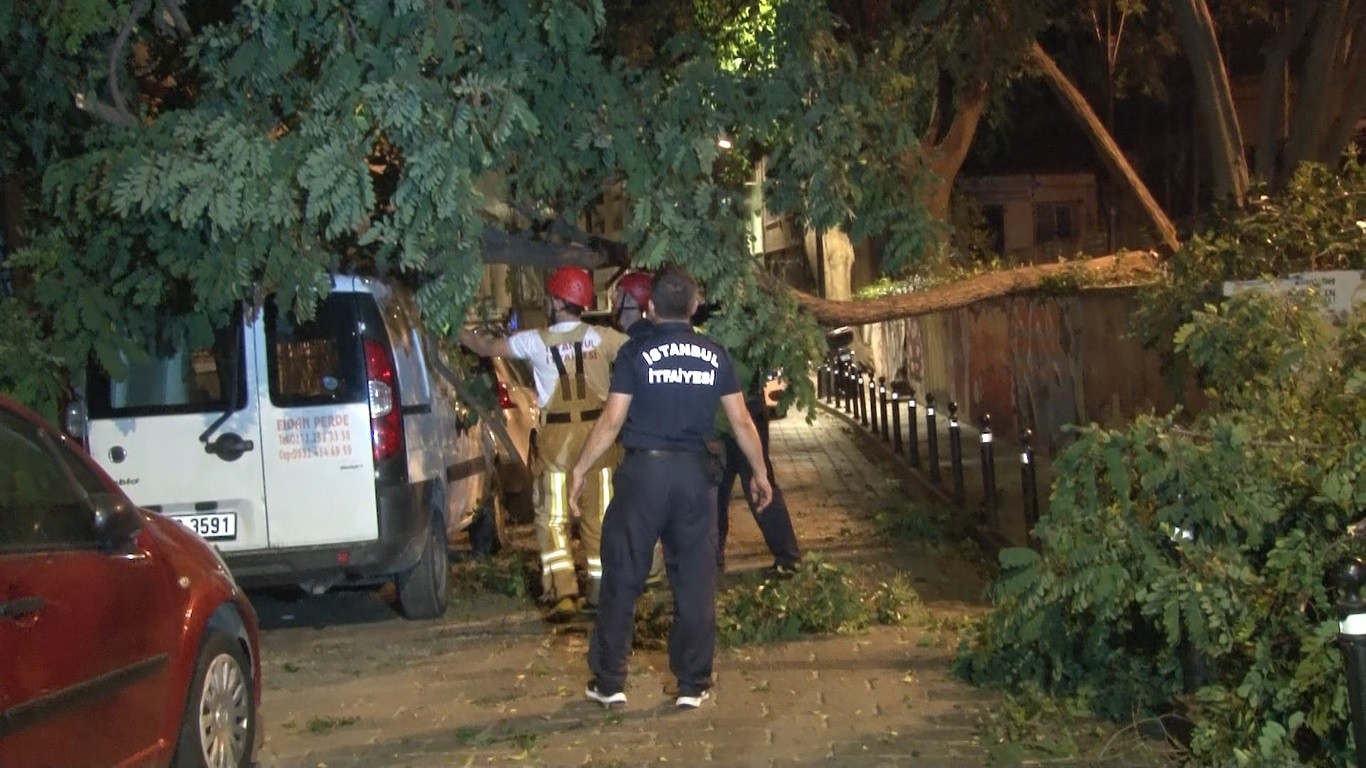 Beşiktaş'ta Aracın Üstüne Ağaç Devrildi