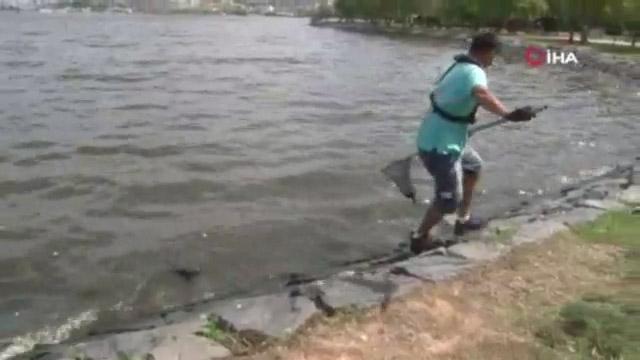 Küçükçekmece Gölü'nde Pis Koku Ve Balık Ölümleri