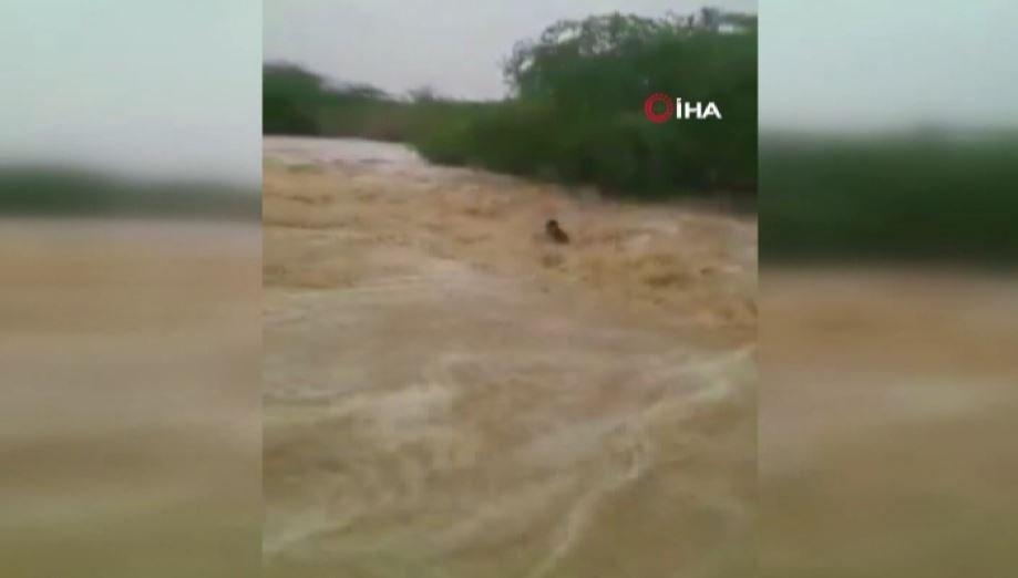 Soçi'de Sel Ve Fırtına Etkili Oldu