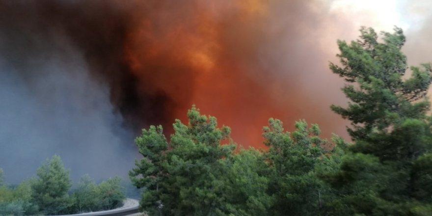 Manavgat'ta yangın büyüyor