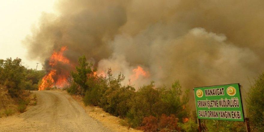 Pakdemirli, yangınlardaki son durumu açıkladı