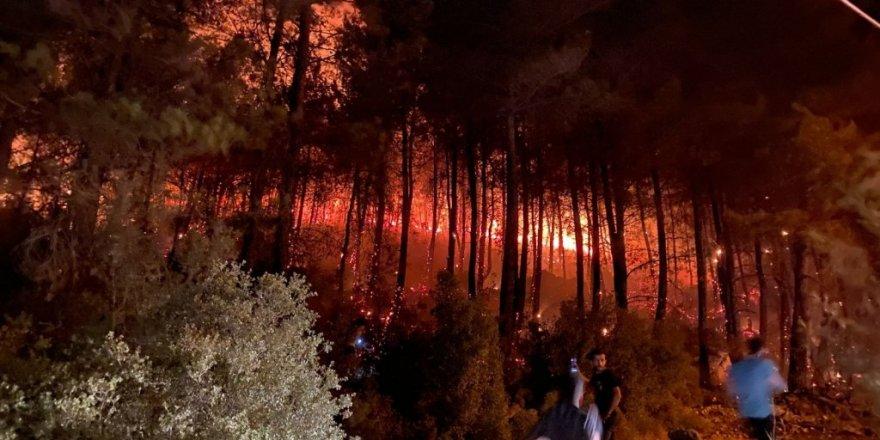 Yanan Ormanlara ne yapılacağı üç gün önce Resmi Gazete'de belirlenmiş