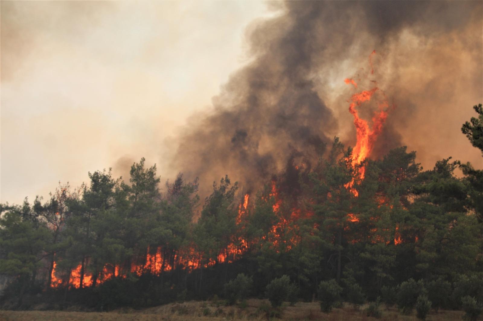 Orman Yangınları İle Mücadele Eden Antalya'ya Yağmur Müjdesi