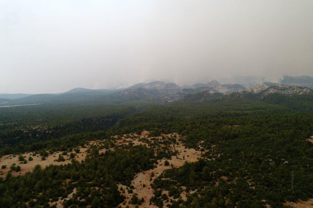 Menteşe'de Yangın Söndürme Çalışmaları Devam Ediyor