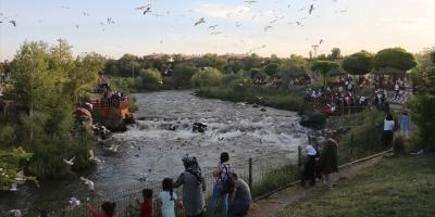 'Doğunun İncisi' Van Turistleri Cezbediyor