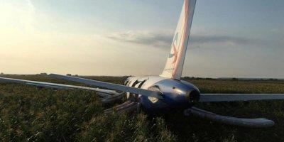 Rusya'da Kuş Sürüsüne Çarpan Yolcu Uçağı Tarlaya Acil İniş Yaptı