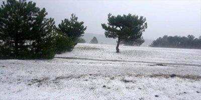 Kastamonu'da Etkili Olan Dolu Nedeniyle Bazı Tarım Arazileri Zarar Gördü